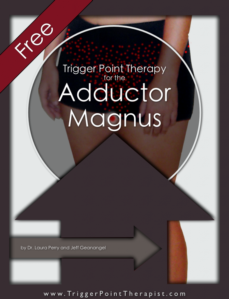 Trigger Point Therapy for Adductor Magnus
