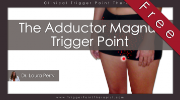 Adductor Magnus Trigger Point: The PMS Trigger Point