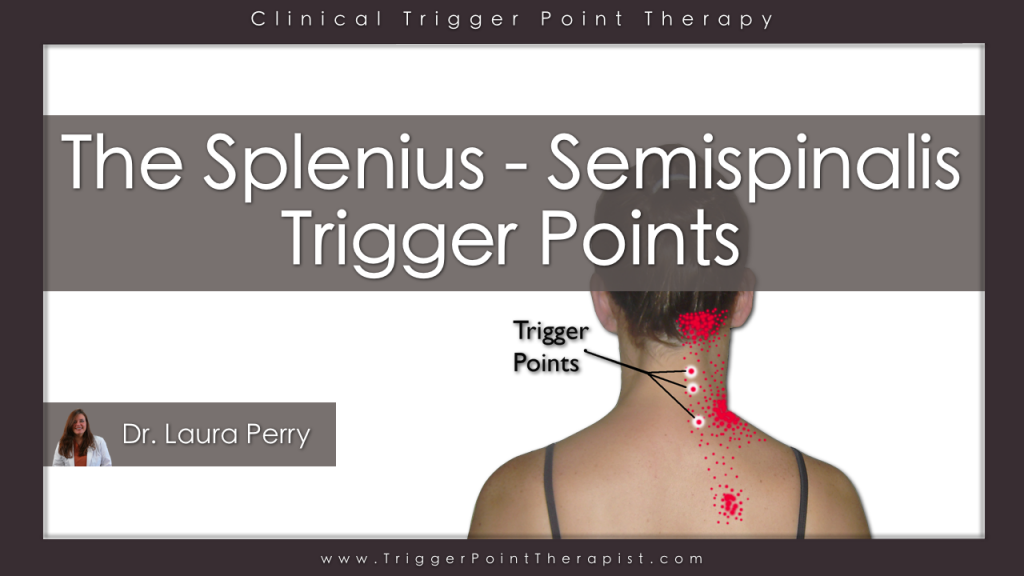 Trigger Point Video for Posterior Cervical Muscles ...