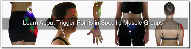 "Banner image for the ""Trigger Points in Muscles Directory"""