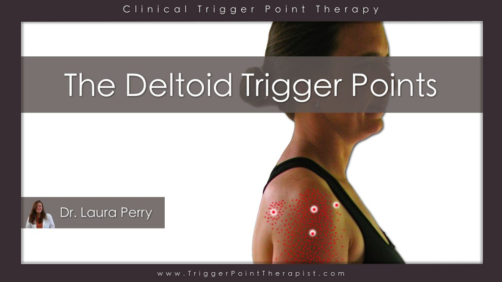 Deltoid Trigger Points What You See Is What You Get