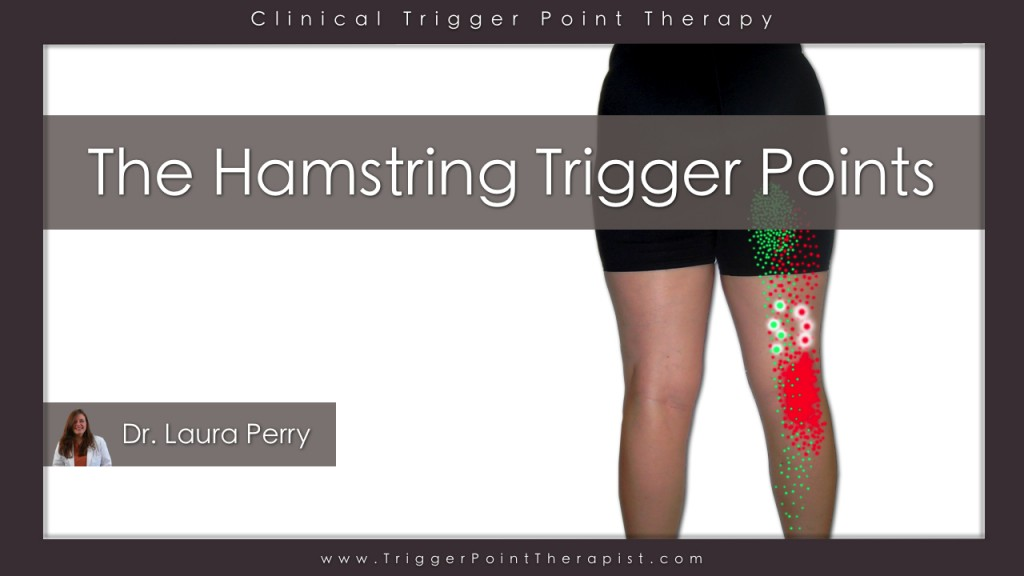 Hamstring Trigger Points Video