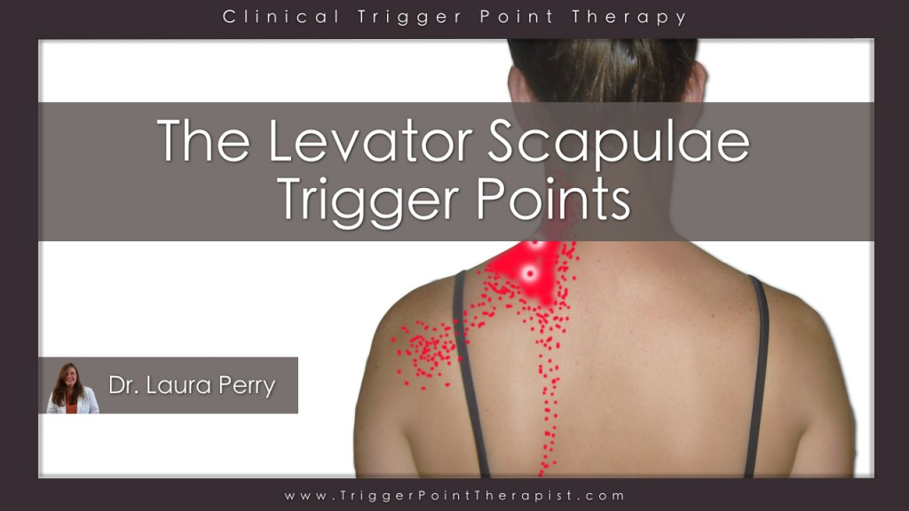 Levator Scapula Trigger Points Video