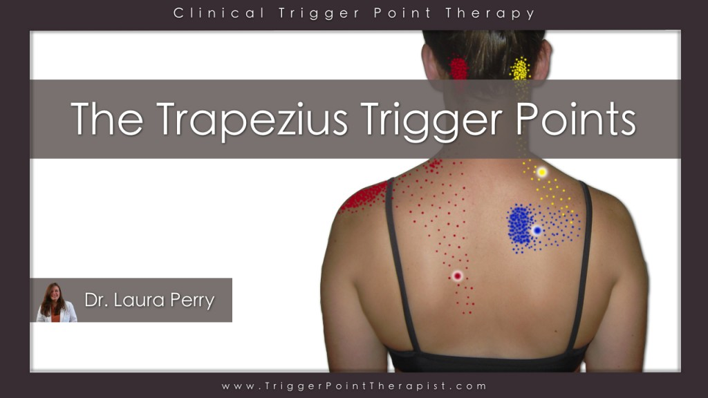 Link to Trapezius Pain and Trigger Points Video