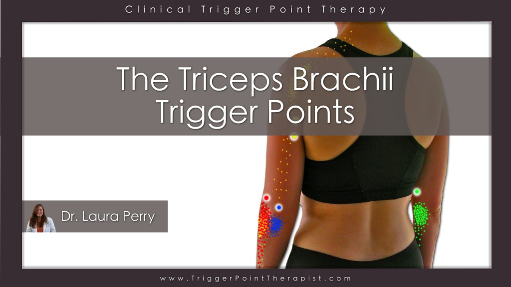 Trigger Point Video for Triceps Brachii Muscle ...